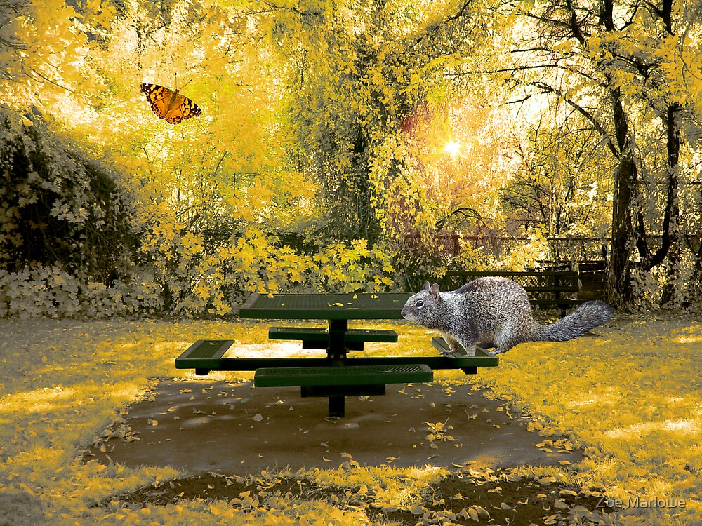 The Picnic Table by Zoe Marlowe