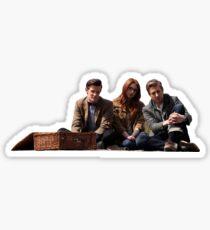 11th Doctor Sticker  Sticker