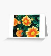 Orange Flowers .- Greeting Card