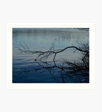 Branch on Water Art Print