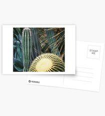 Botanic Gardens _ Cactus  Postcards