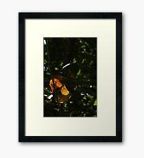 Unique Framed Print