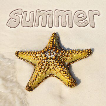 the summer season on the shores of the sea star by Eevlada