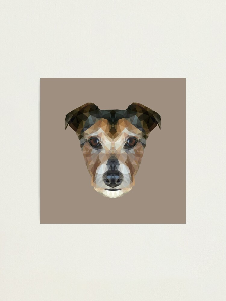 Alternate view of The Jack Russell Photographic Print