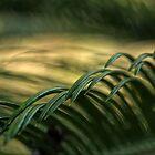 Green Wave by Ostar-Digital