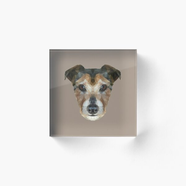 The Jack Russell Acrylic Block
