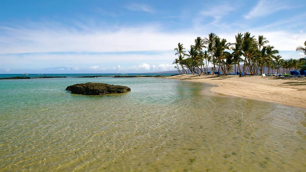 Mauna Lani Beach : Hawaii by Christopher Seufert