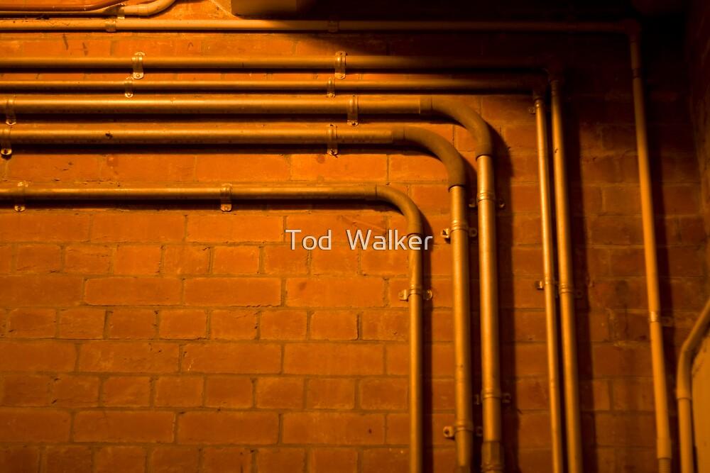 turn left by Tod  Walker