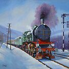 Romanian 2-8-0 locomotive in the snow by Mike Jeffries