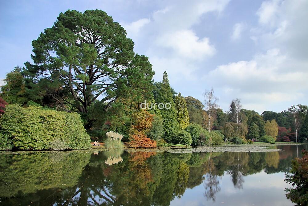Autumn Lake by duroo