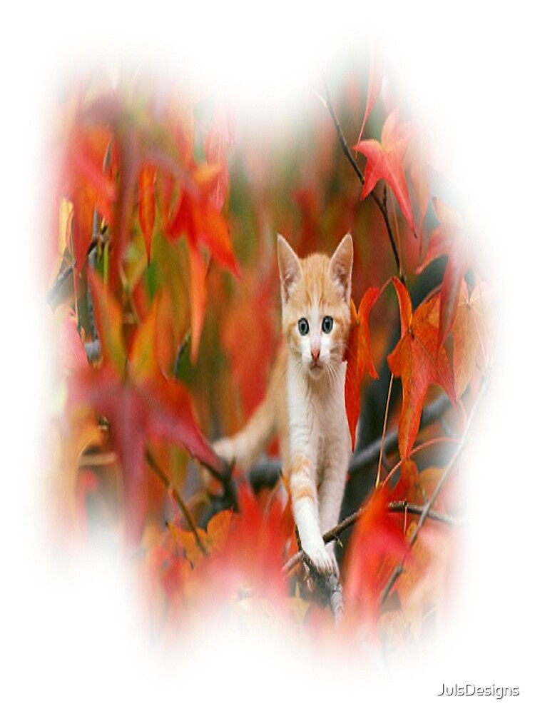Here Kitty Kitty  by JulsDesigns