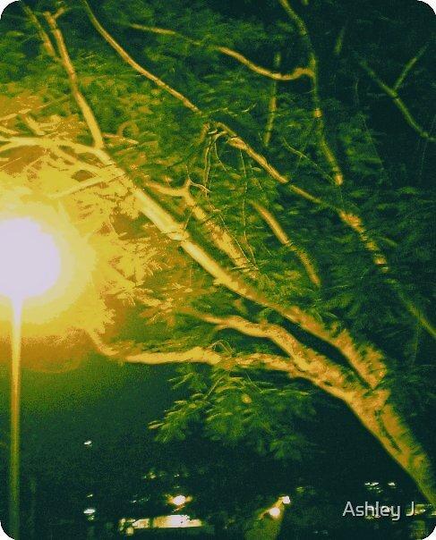 iluminado by Ashley J