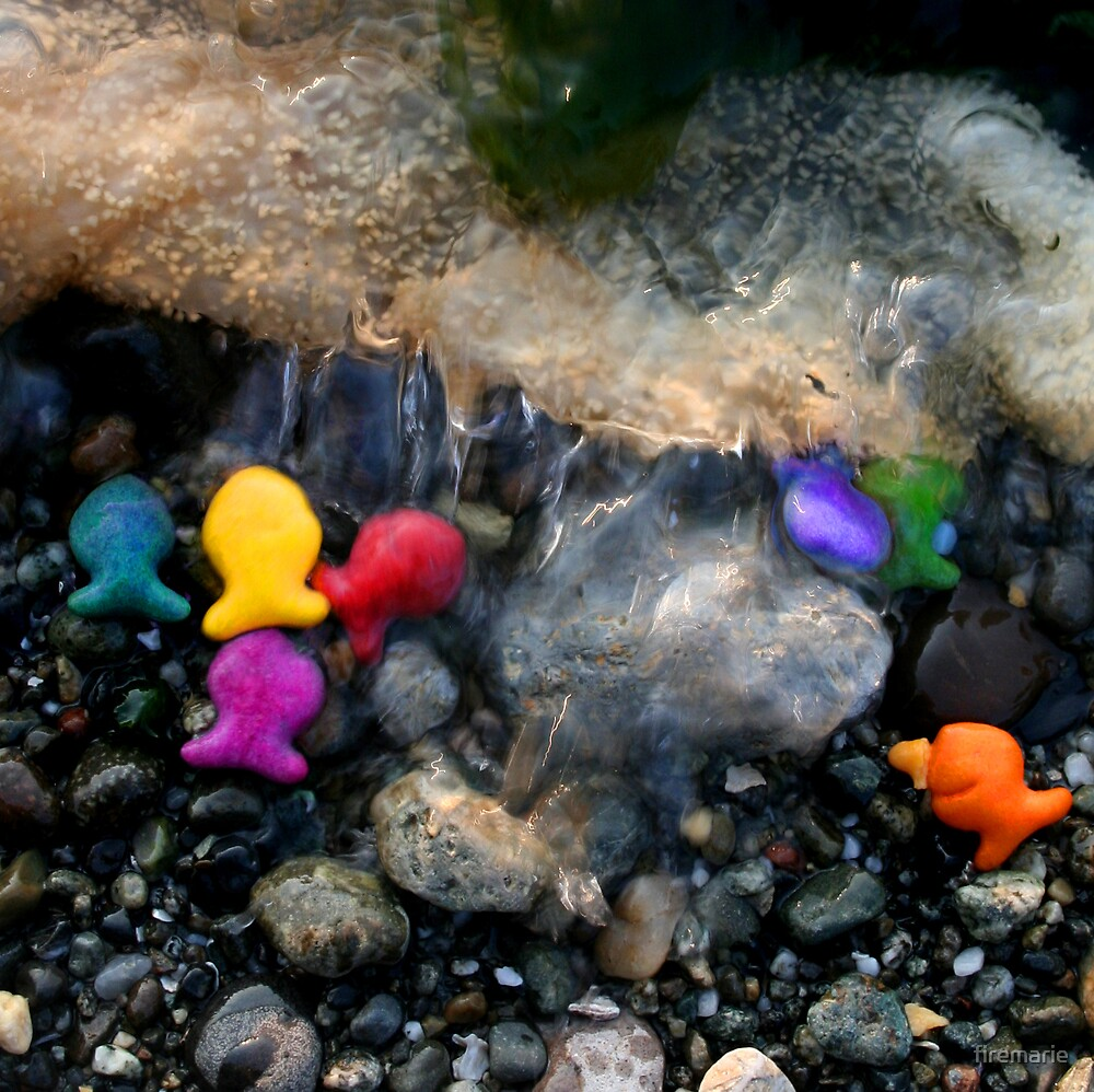 Rainbow Fish 2 by firemarie