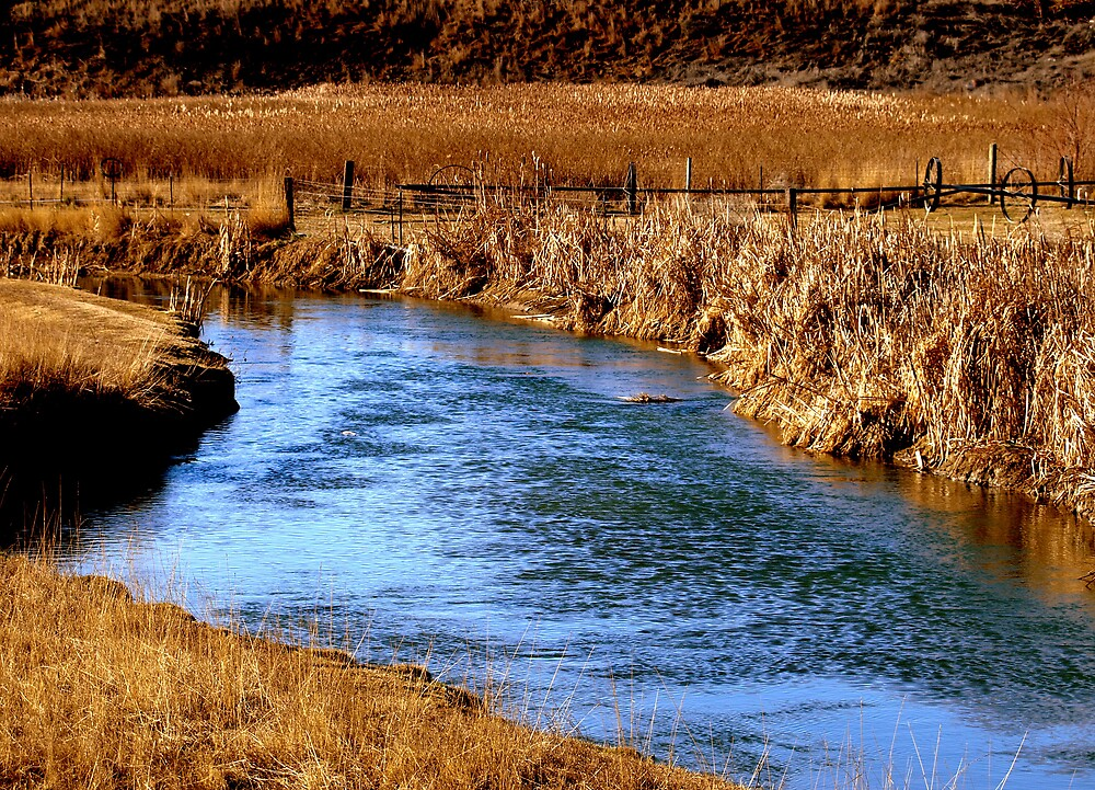 Country Creek by jHarwick