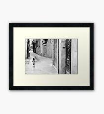 Barcelona - Street tease. Framed Print