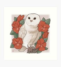 Barn Owl + Red Pansies Art Print