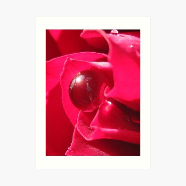 Red Splendor Art Print