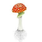 Fly agaric   by Emma Parker