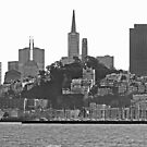 San Francisco Skyline - California, USA by Buckwhite
