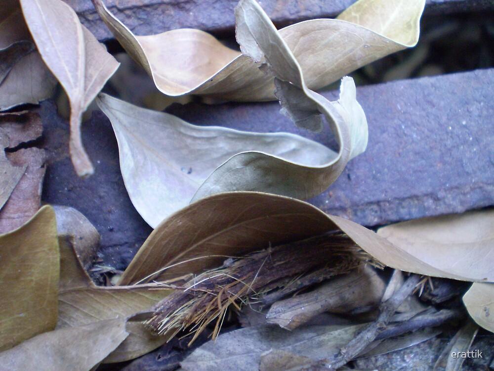 natures leaf blower by erattik