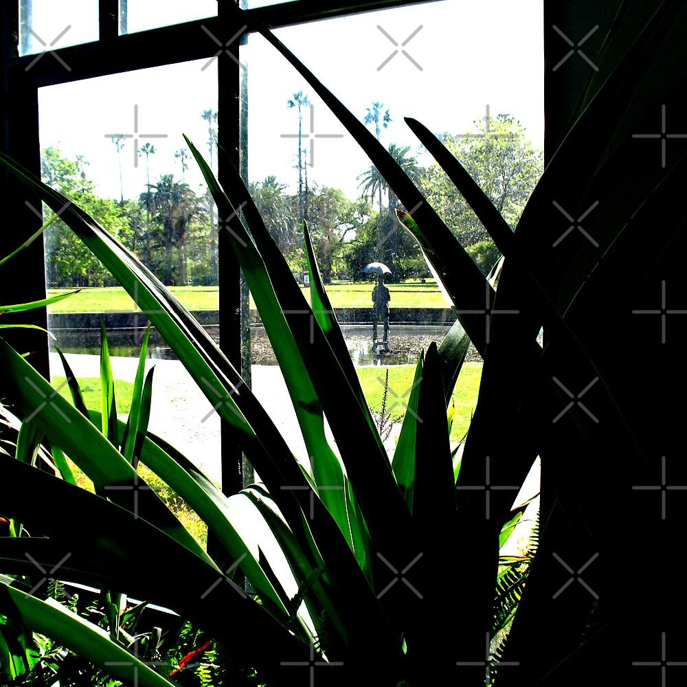 inside the glasshouse by emma-jane day