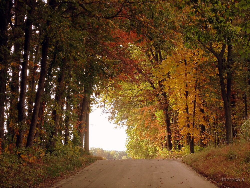 A FALL ROAD by theresa a