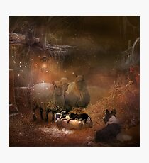 The visitors  Photographic Print