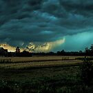storm over ontario farmland by Barry W  King