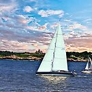 Newport Sailing by Nancy Richard