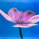 """Love Me  (From """"Painted Flowers"""" collection) by EvaMarIza"""