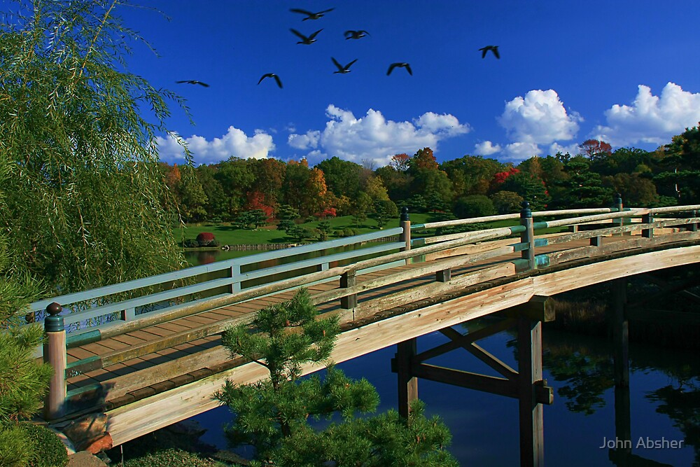 Fall Migration by John Absher