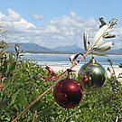 Christmas in the Bay by Louise Linossi Telfer