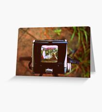 Through the Viewfinder Greeting Card