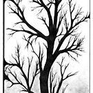 Winter's Bark, Ink Drawing by Danielle Scott