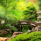 Japanese Garden - Water under the bridge by Michael Savad