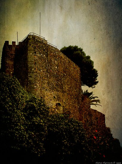 Detail of the castle by Andrea Rapisarda