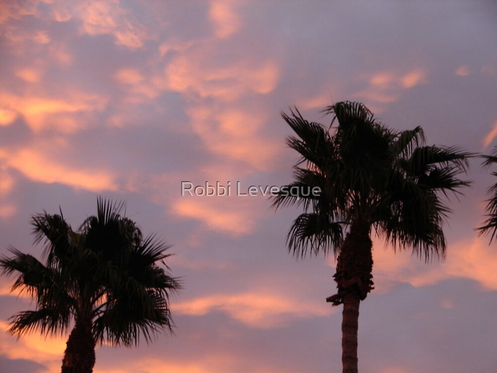 Pink Clouds & Palm Trees by down23