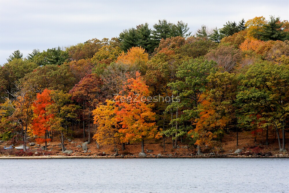 Autumn Colors by ZeeZeeshots