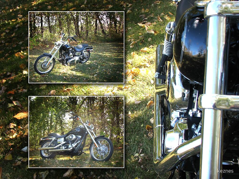 Harley Davidson by keznes
