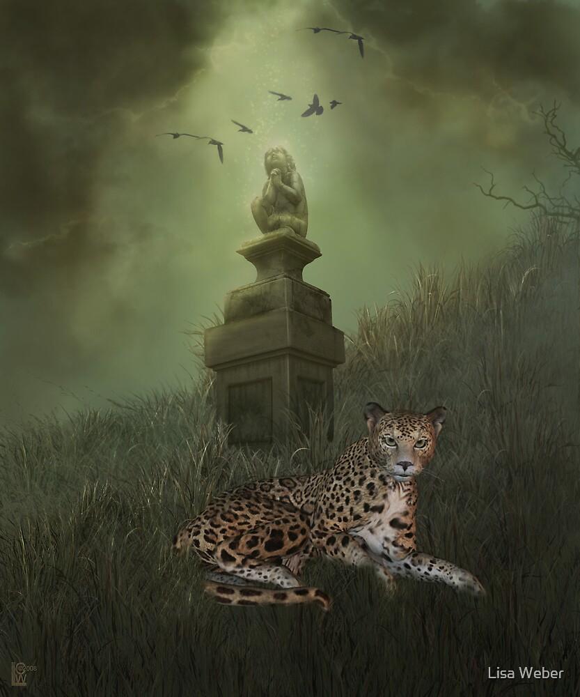 Nightfall Approaches by Lisa  Weber