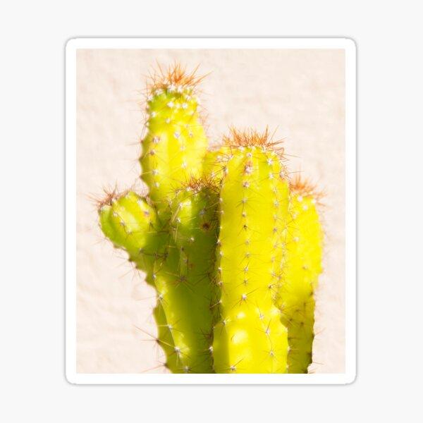 lemon cactus Sticker