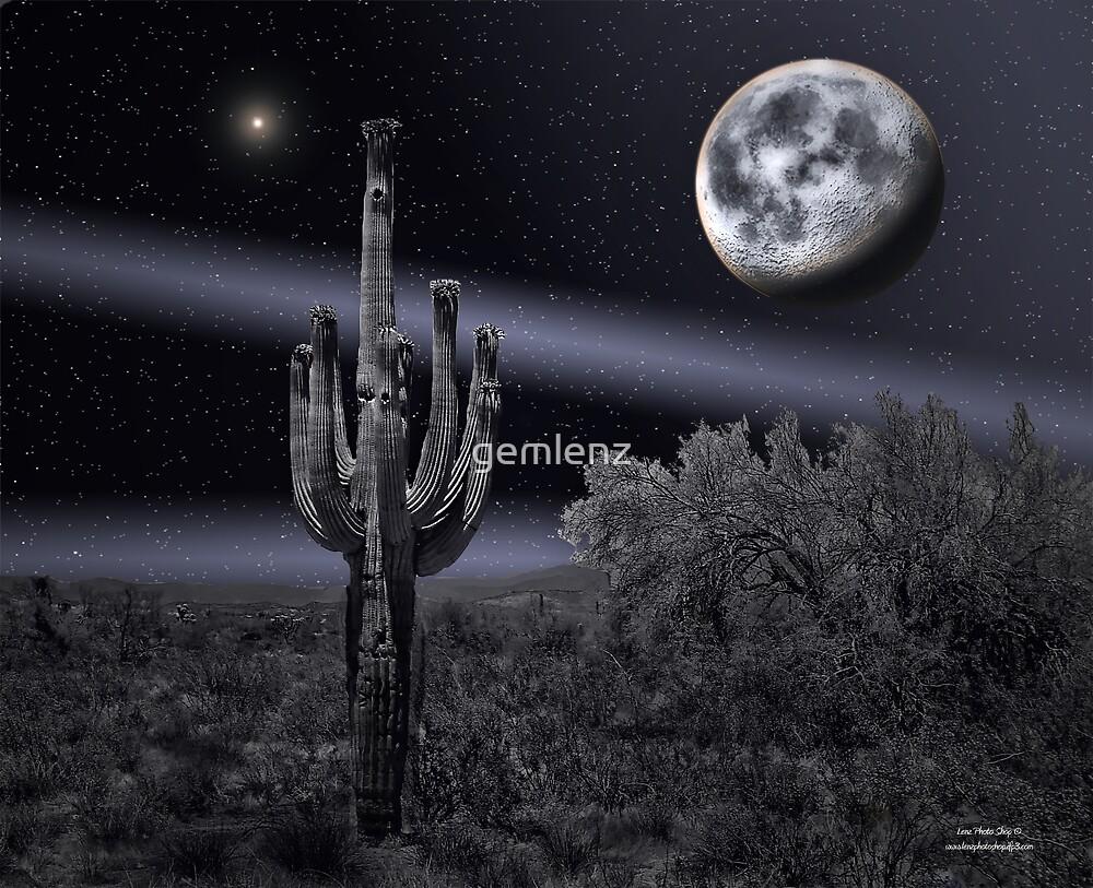 Cactus Moon-2 by gemlenz