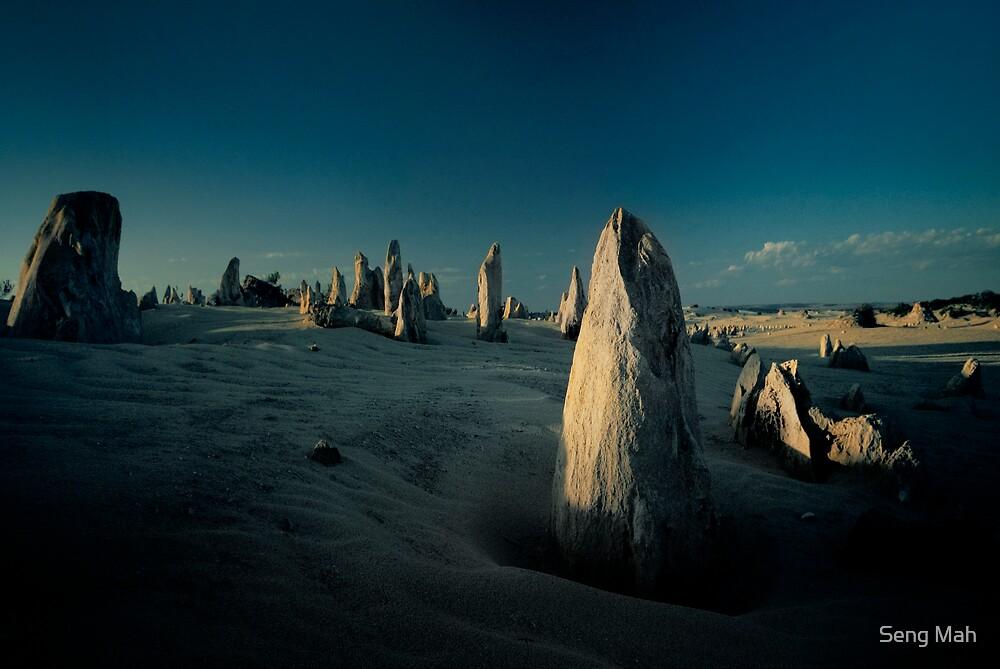 Sentinels by Seng Mah