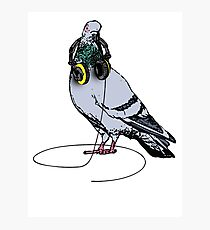 Techno Pigeon Photographic Print