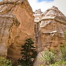 tent rocks 8 by Bruce  Dickson