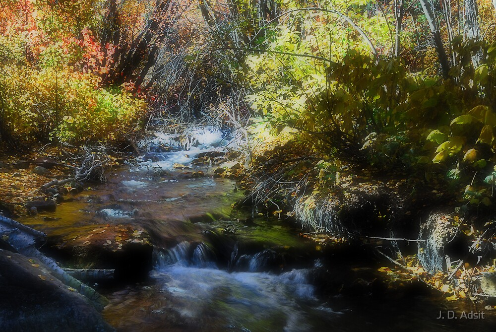 Icing Autumn for an Early Chill by J. D. Adsit