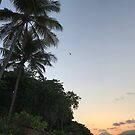 Fitzroy Island Sunset from Foxy's by Annie Smit