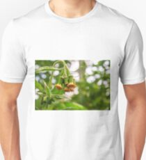 Withered Asteraceae T-Shirt
