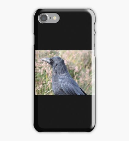 Bore Black Feathers iPhone Case/Skin