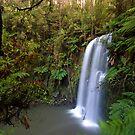 Beauchamp Falls by Underload